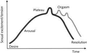 This figure shows how sexual response increases during arousal, plateaus, increases sharply during orgasm, and resolves through a gradual decline in sexual response or tension. From Masters and Johnson